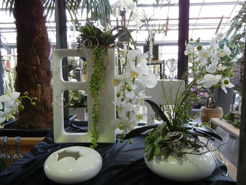 Orchideen - Orchideen arrangement ...